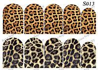 Слайдер -дизайн Шкура,Леопард S013