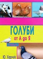 Ю. Харчук Голуби от А до Я