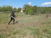 Сколько стоит скосить одну сотку травы