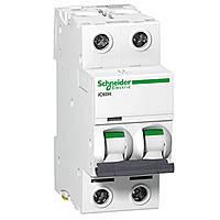 Автоматический выключатель iC60H 2P 20 A D Schneider Electric (A9F85220)