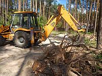 Корчування дерев, фото 1