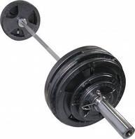 Штанга олимпийская Newt 175 кг. Гриф 2,2 м. TI-NE0175-2200