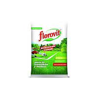Florovit для газонов пораженных мхом, 10 кг