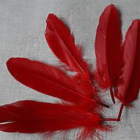 Перо декоративное гусиное красное