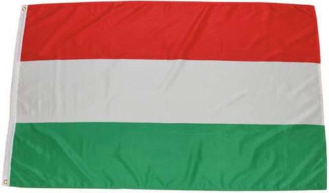 Национальный флаг Венгрии 90х150см MFH 35103U, фото 2
