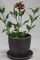 Горшок для цветов из керамики