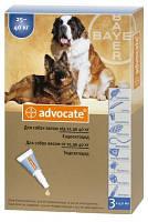 Advocate капли для собак весом от 25 до 40 кг