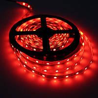 LED лента СТАНДАРТ (в силиконе) 60Led/m SMD2835 4,8W/m IP65 Красный