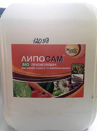 Биоприлипатель Липосам, (10 л) — для повышения эффективности средств защиты растений, фото 2