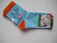 Детские носки демисезонные - ВиАтекс р.20 (шкарпетки дитячі, ВіАтекс)