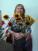 -Приведение в порядок домашних цветов(пересадка,лечение,размножение,с выездом флориста на дом)