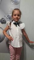 Блуза школьная детская  , котон