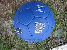 Мяч футбольный  №5 EURO-2012, фото 3