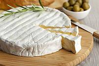 Закваска,фермент + плесень для сыра Бри