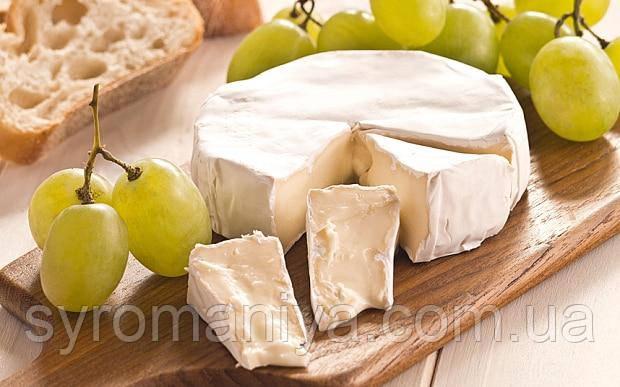 Закваска,фермент + цвіль для сиру Камамбер