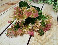 Букет незабудка розовая