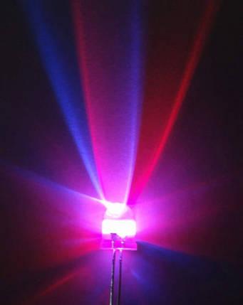 Яркий RGB светодиод 3 мм быстрая смена цвета, фото 2