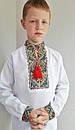 Вышиванка для мальчиков цветная ЖТ30, фото 3