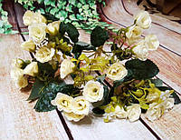 Букет  роза кремовая