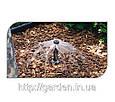 Сопло баблер Hunter PCN-10, 20, 25, 50, фото 2