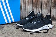 Мужские кроссовки Adidas Alpha Bounce (Адидас Альфа Бонс) темно-серые