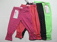 Леггинсы-бриджи трикотажные для девочек, размер 128 арт. G 40848