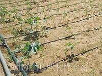 Система полива огорода для ленивых