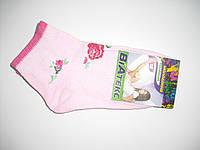 Детские носки демисезонные - ВиАтекс р.18 (шкарпетки дитячі, ВіАтекс)