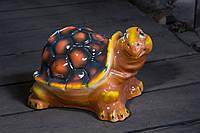 Красивая черепаха