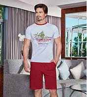 Комплект мужской футболка с шортами BERRAK