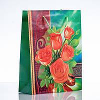 Пакет подарочный 24х18см (материал  ПЭ)