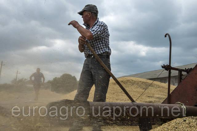 Сколько получает среднестатистический работник аграрного сектора