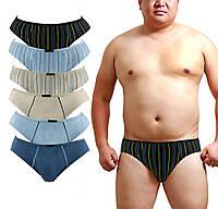 Мужские трусы плавки бамбук Ziller 895 6XL 58-60. В упаковке 6 трусов