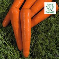 Семена моркови Натива F1 / Nativa F1 от компании Саката (Sakata), Япония, 100 000 семян