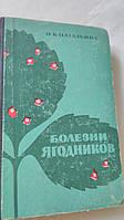 Болезни ягодников О.Натальина