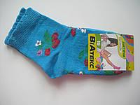 Детские носки демисезонные - ВиАтекс р.16 (шкарпетки дитячі, ВіАтекс)