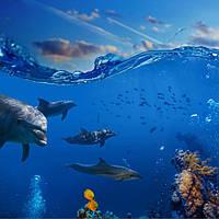 Панно дельфин кафель на стены, плитка 20х30см.