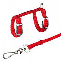 Шлея+поводок Trixie Harness with Leash для мелких грызунов нейлоновый, 12-25 см, фото 1