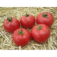 Семена томата  Афен F1 . 250с.