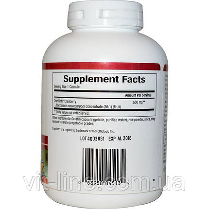 Natural Factors, Журавлинний супер концентрат, 500 мг, 90 капсул, фото 2