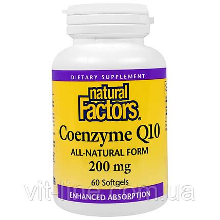 Natural Factors, Кофермент Q10, 200 мг, 60 мягких желатиновых капсул, фото 2