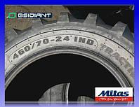 Шина 460/70-24 (17.5L-24) IND 159A8 TR-01 TL Mitas/ Митас
