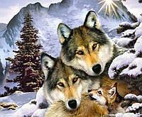 Алмазная вышивка Стая волков
