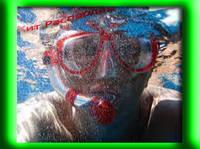 Набор для ныряния : Маска трубка и ласты для взрослых
