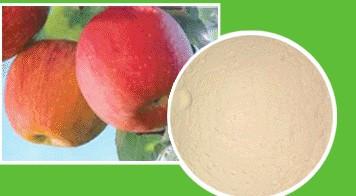 Яблоко порошок 100 г
