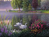 Алмазная вышивка Семья лебедей на пруду