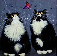 Коты черные (полная выкладка)