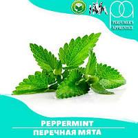 Ароматизатор TPA/TFA Peppermint Flavor (Перечная мята) 10 мл