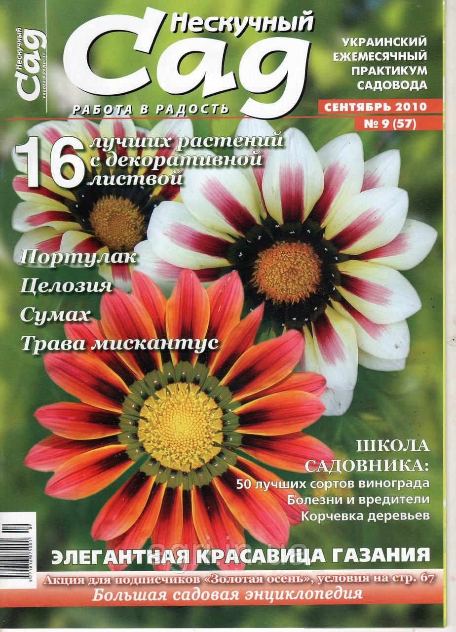 """Коллекционный номер. Журнал """"Нескучный сад"""" сентябрь 2010г., фото 1"""