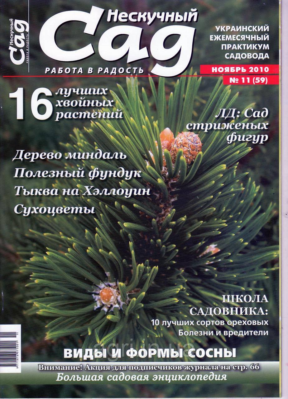 """Коллекционный номер. Журнал """"Нескучный сад"""" ноябрь 2010г."""